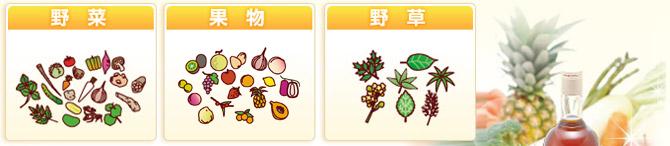 野菜・果実・野草