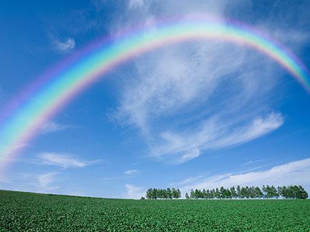 rainbow-land450